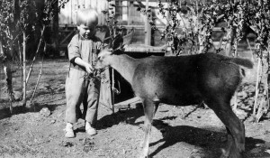 Bobby with his pet deer, 1919